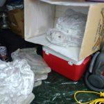 自作の集塵室