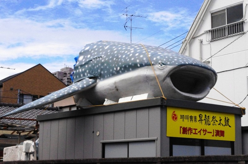 懐かしのジンベイザメ