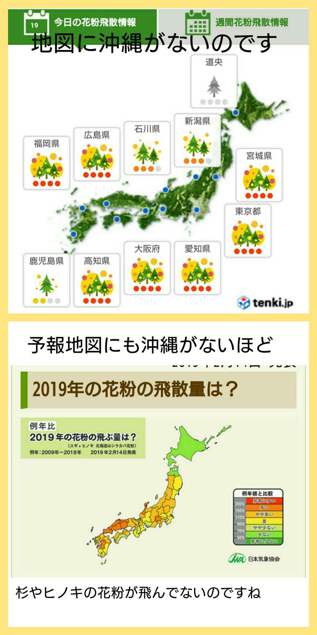 花粉のない沖縄?