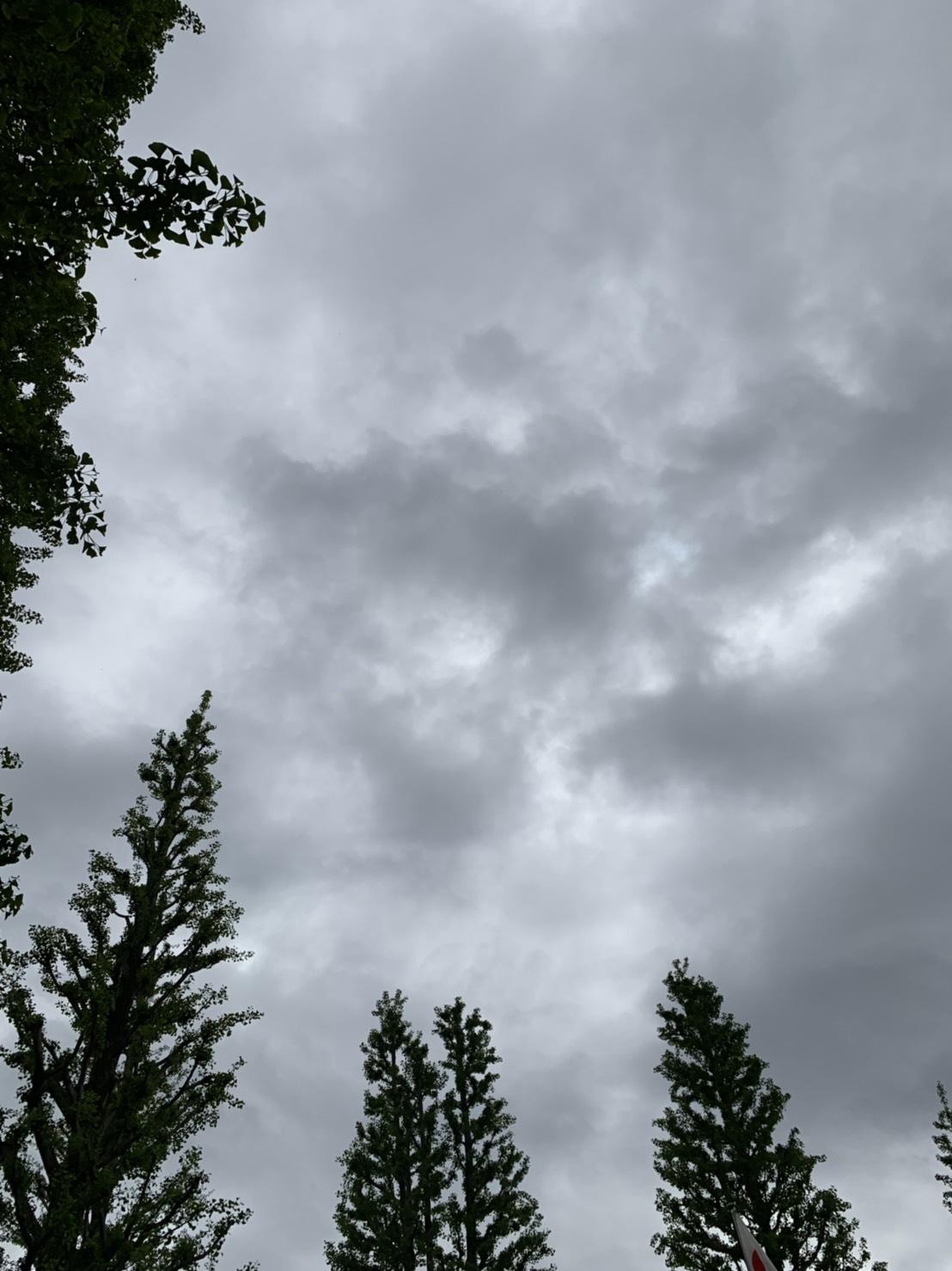 あいにくの曇り空