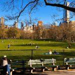 N.Y.の公園